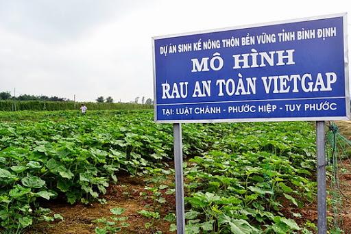 nông sản VietGap